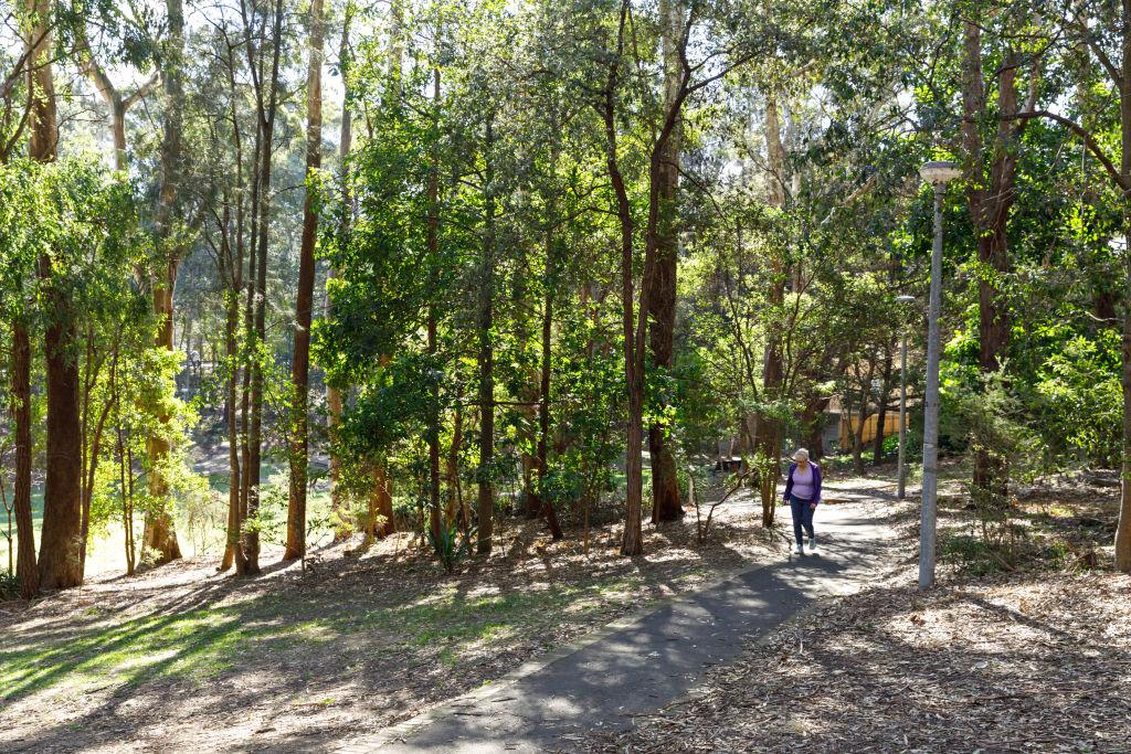 Helen Street Reserve in Lane Cove NSW