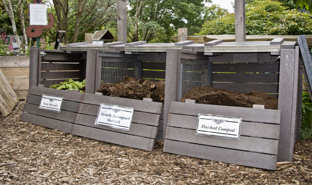 Many community gardens accept compost donations.