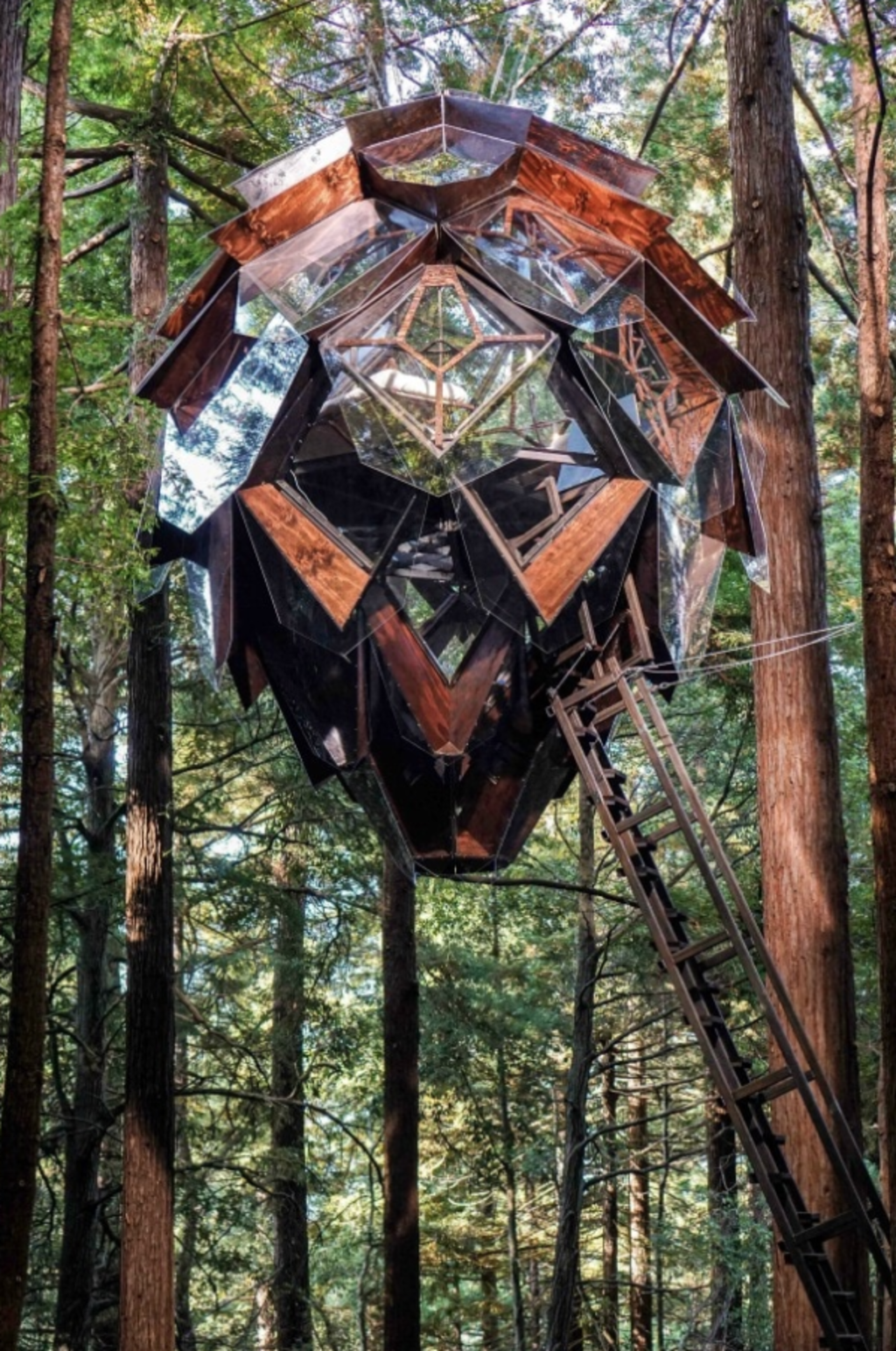 Just like a pinecone, there's a strong symmetry to the geodesic structure. Photo: Alissa Kolom
