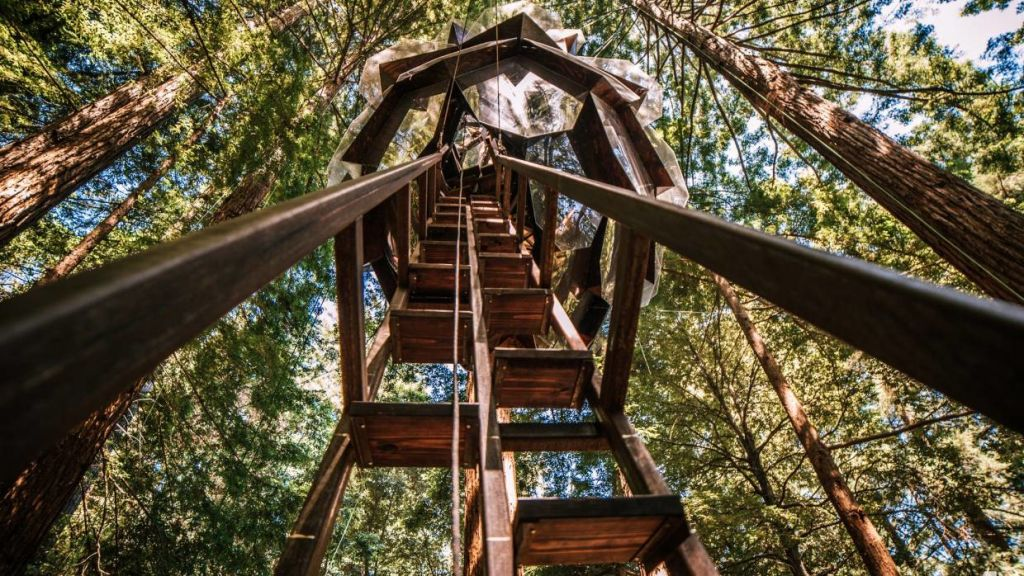 An extra-long ladder provides access. Photo: Alissa Kolom