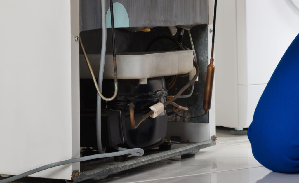The drip pan (white) collects moisture and can become mouldy if it isn't emptied and cleaned regularly.