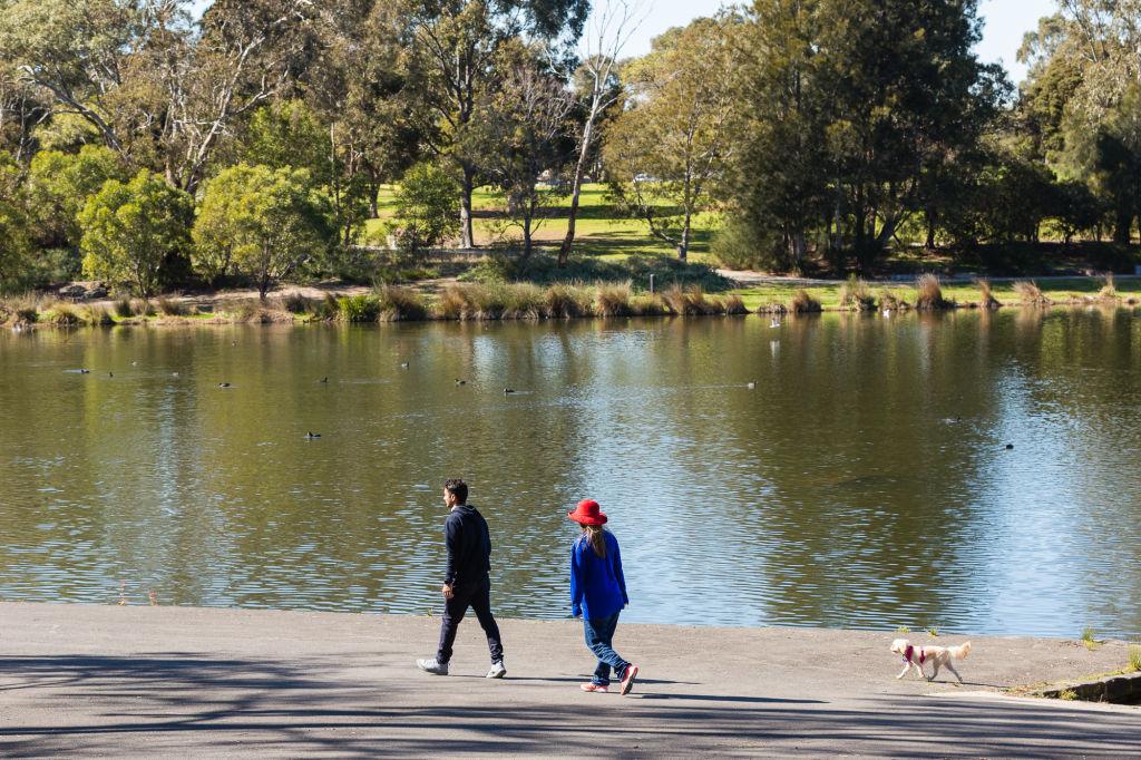Domain Neighbourhood Reservoir_Edwardes Lake Park Photo: Greg Briggs