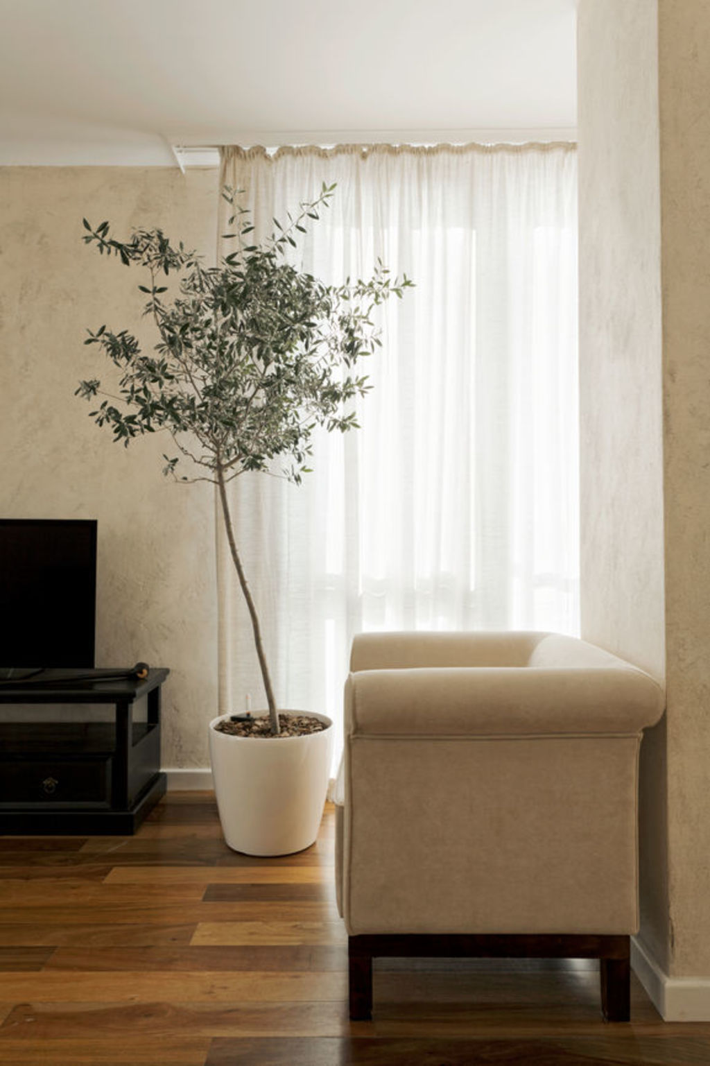 Indoor trees promote positive wellbeing and can filter the air making it essential for enhancing any interior.