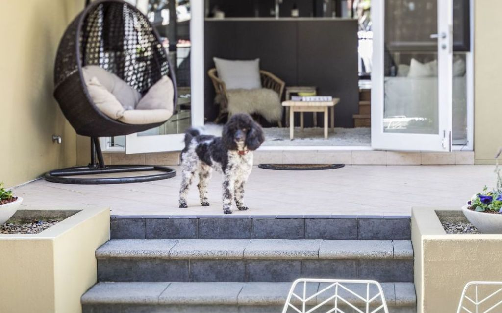 Apartments or townhouses with large balconies or courtyards will appeal to pet owners.
