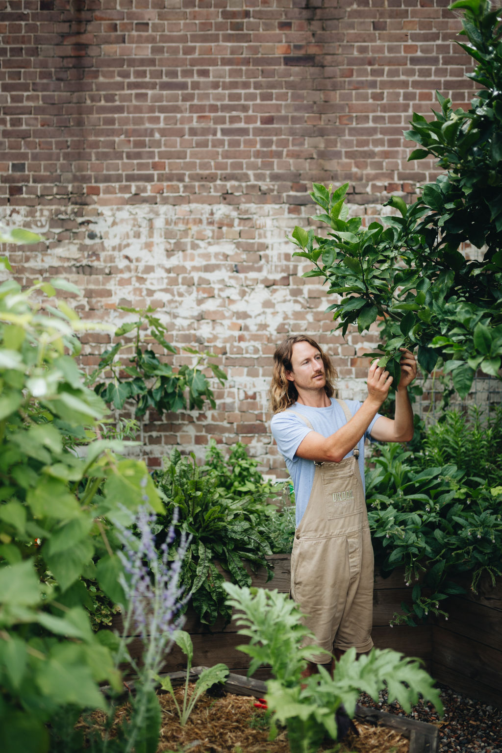 Urban Growers Article #1.
