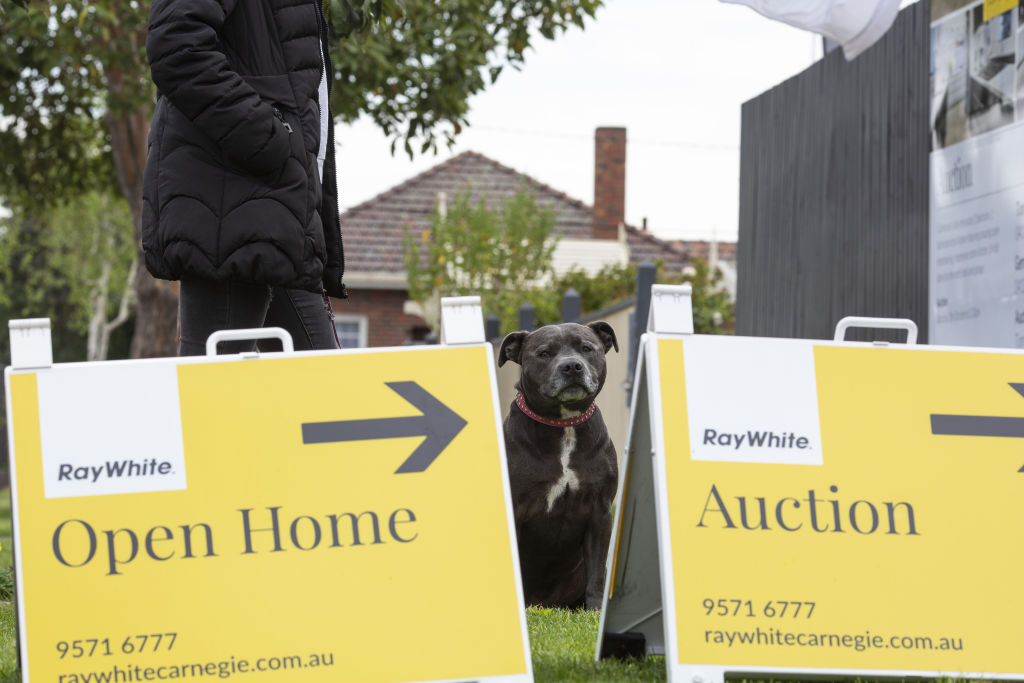 Video_auction_-_187_Centre_Dandenong_Rd_Cheltenham_3_imj4yr