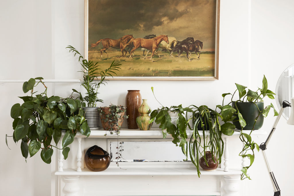 All vessels in the house in the house are either handmade by Jenna's friends or second hand. 'I think it's the easiest way to add a little flavour to a room', she says. Styling: Annie Portelli.