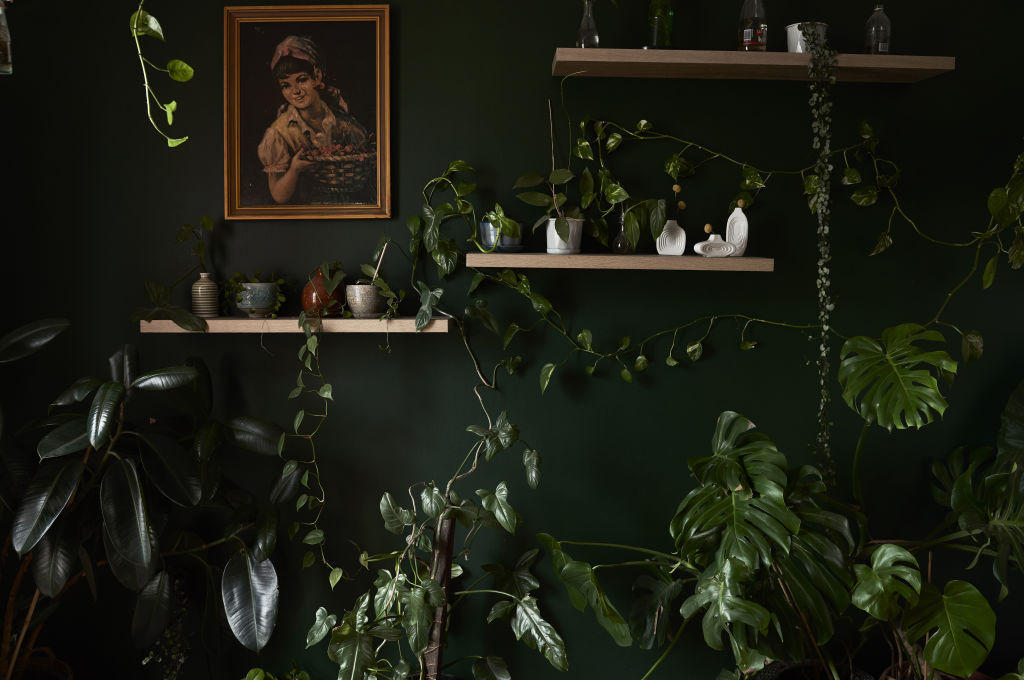 'I always have dreams of coloured walls and this was my first one. I was nervous when I put the first brush on the white wall…but after I was very very happy that I listened to my creative gut!' Jenna says! Wall colour is Government Green by Dulux. Styling: Annie Portelli.