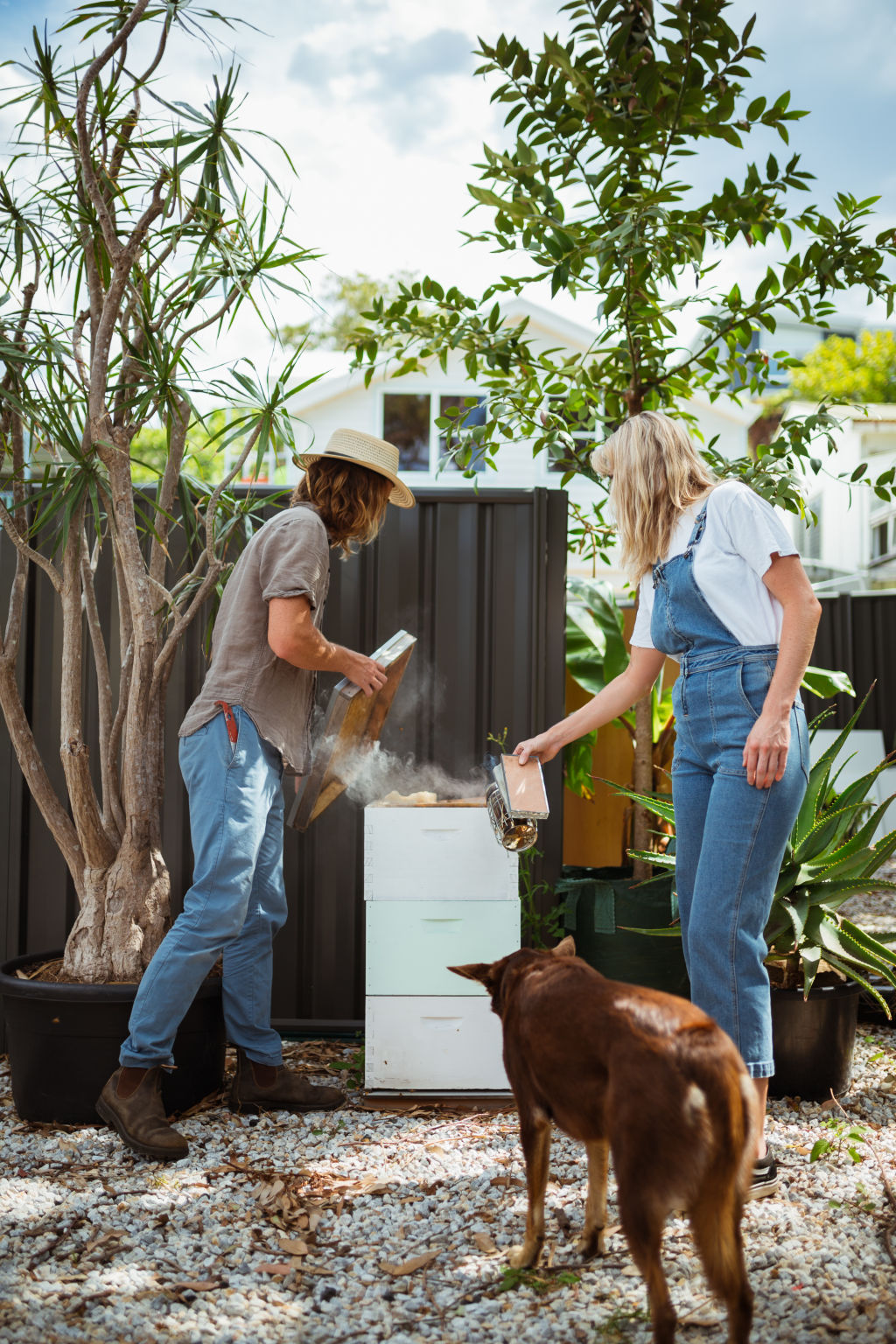 Urban Growers - Beekeeping.