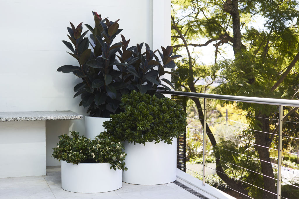 Think_Outside_Gardens_white_pot_cluster_-_photo_by_Anson_Smart_ljsph4