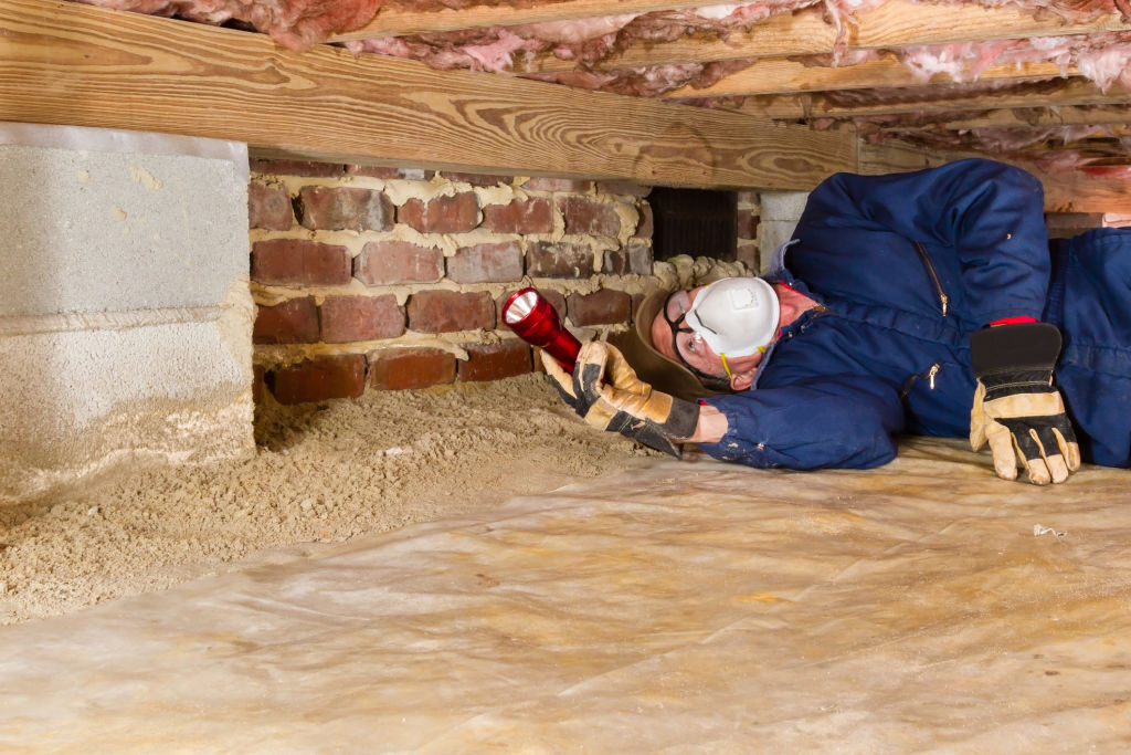 Termites can be stealthy, so have your home inspected regularly if you live in a termite prone area.