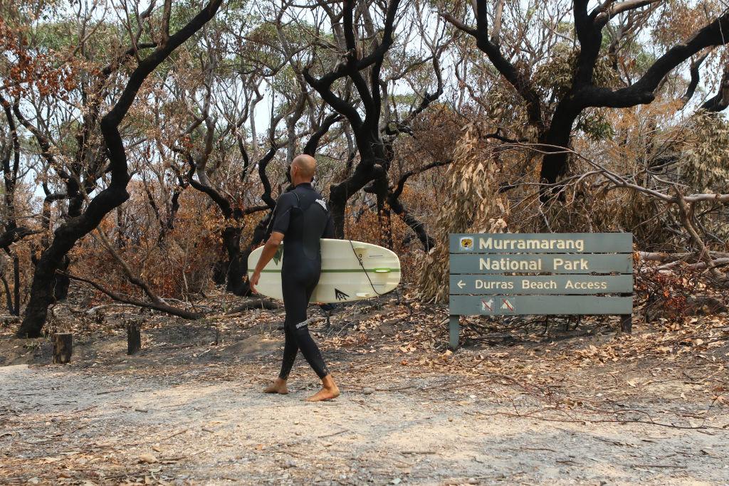 Domain Bushfires - Shoalhaven