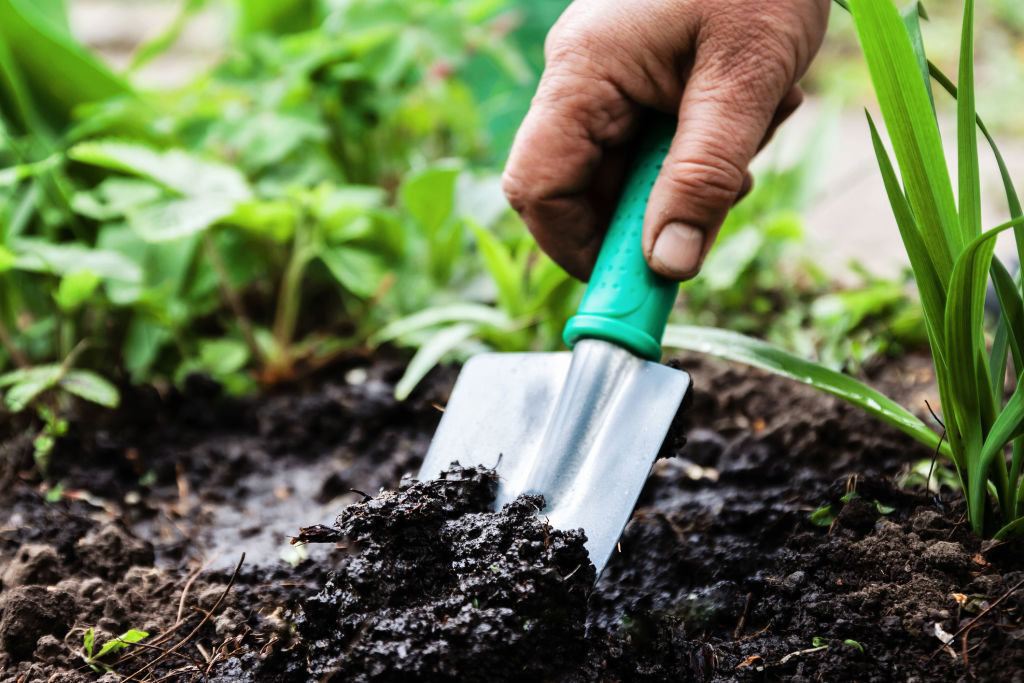 If you buy one gardening tool, make it a trowel.