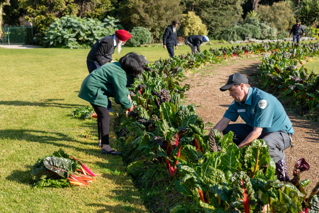 Domain_Werribee_Park_Gardeners_20_ujgieg