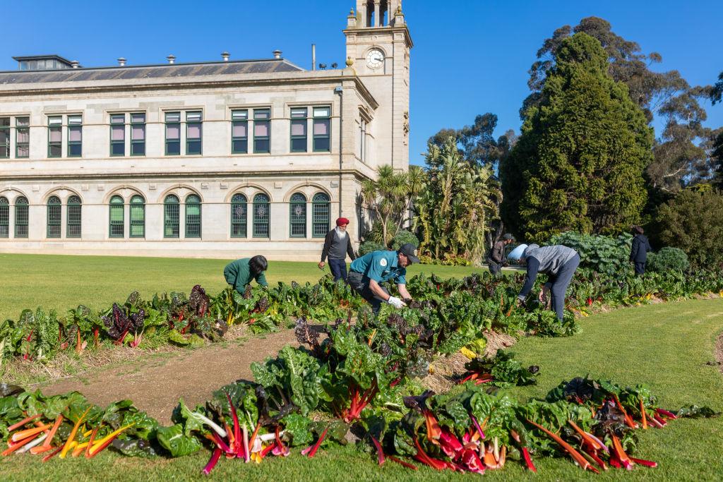 Domain_Werribee_Park_Gardeners_24_tpesby