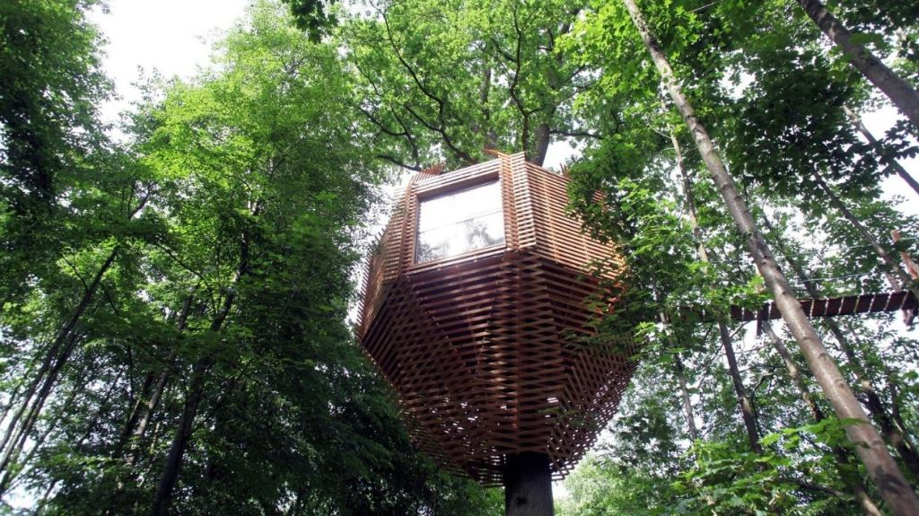 The Origin Treehouse was designed by Marco Lavit.