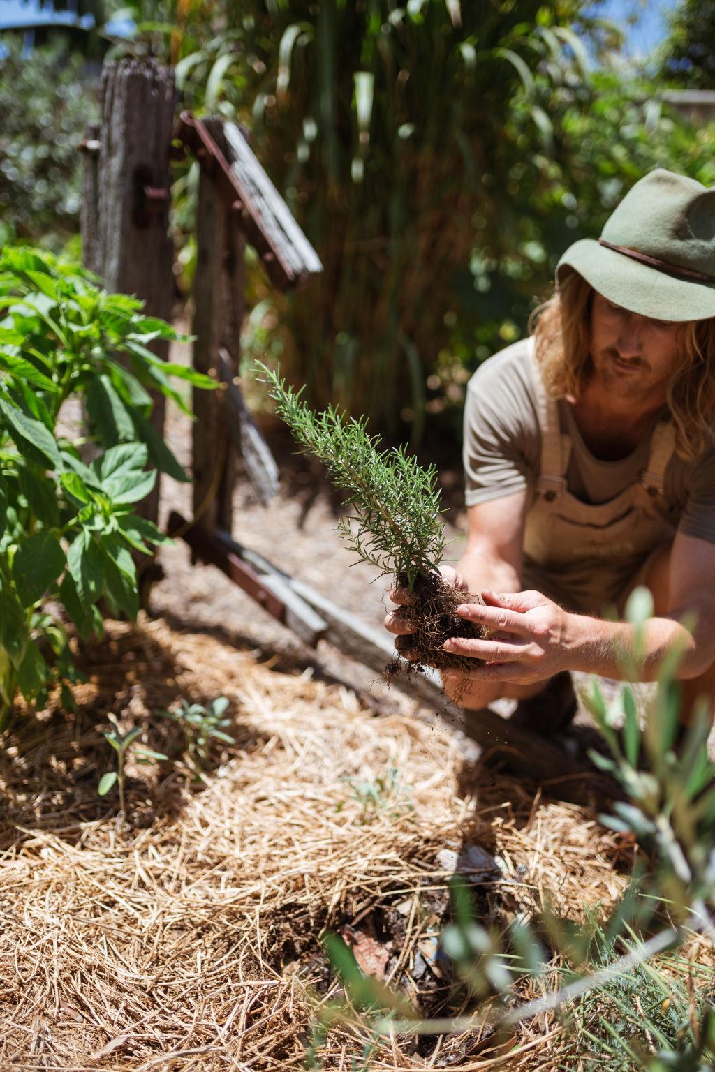 Urban Growers Byron Smith.
