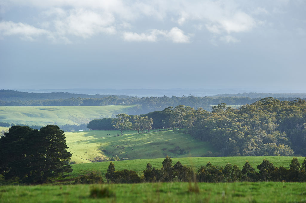 The hilly green of Birregurra.