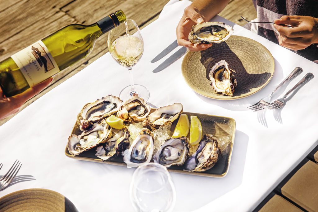 Oysters_ovbiwd