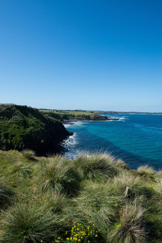 Coastline at Phillip Island