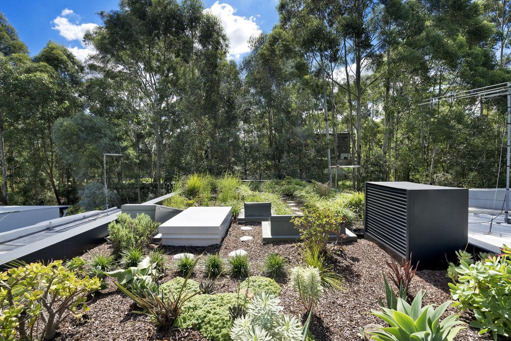 41a_Foss_St_Forest_Lodge_NSW_7_xj6pkz