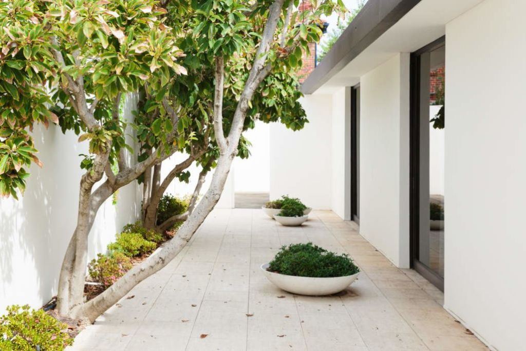 A_house_of_courtyards_and_high_boundary_walls._Seccull_House_in_bayside_Melbourne._Photo_ng2rjk