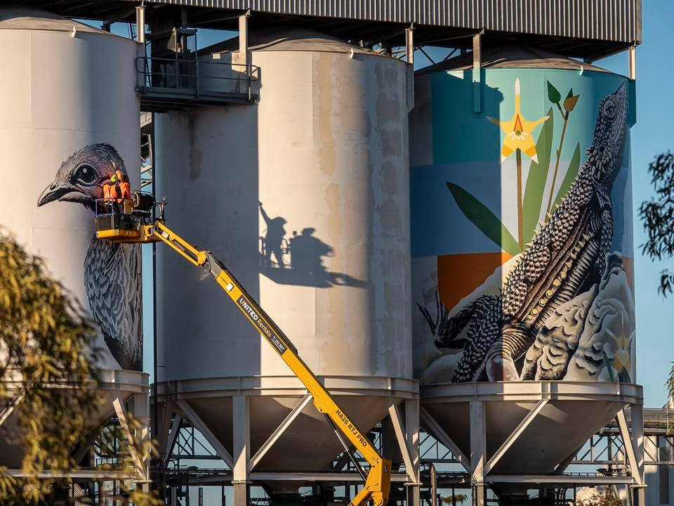 Public_Silo_Trail_mural_in_Newdegate._Photo__Bewley_Shaylor_vbqgdh